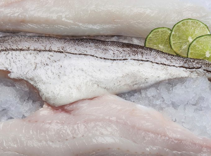 Cuts of Fresh White Fish over Ice