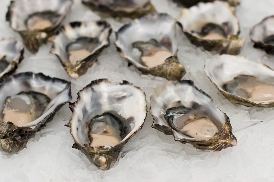 oysters over ice