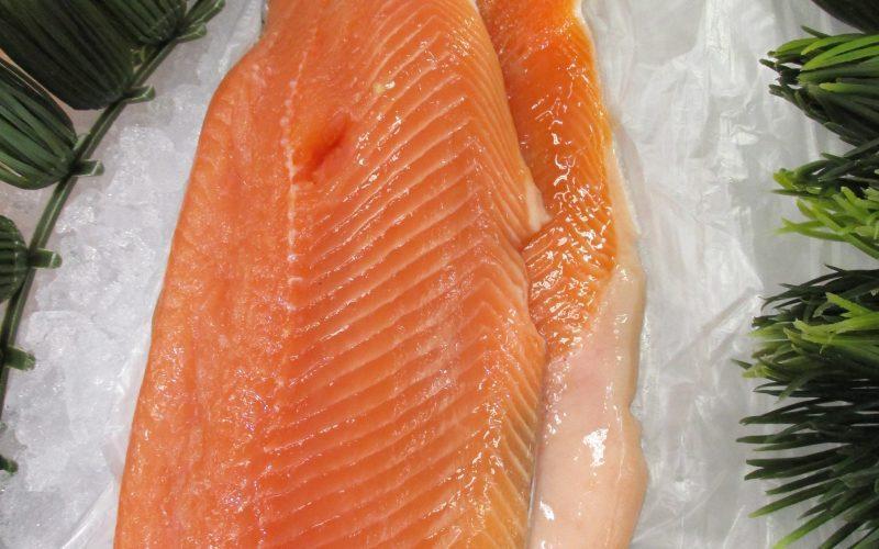 cut of fresh salmon
